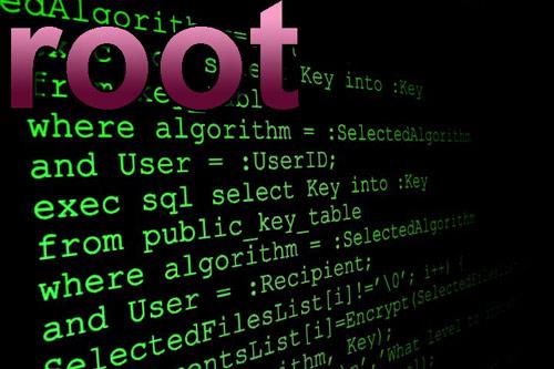 Разбираемся, что такое Root права – их виды и характеристики